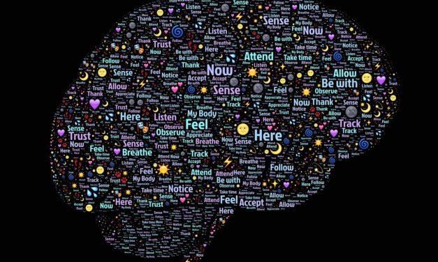 """La nocicezione, il dolore acuto, il dolore cronico e le turbe dell'umore, interpretate come un """"unicuum"""" nello spettro dell'avversione, una nuova teoria d'insieme, secondo un approccio evoluzionistico."""